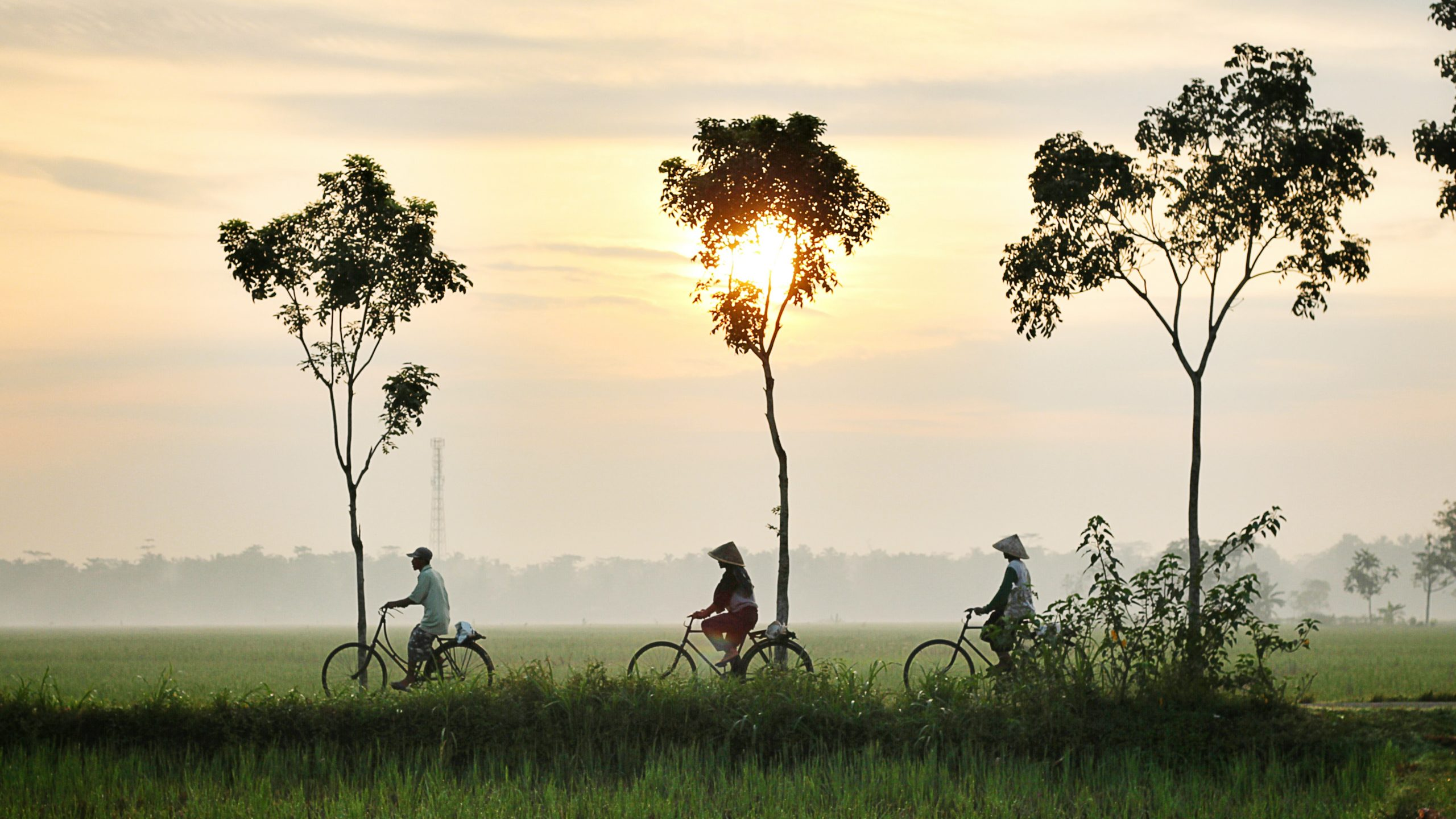 People cycling on peaceful road in Southeast Asia