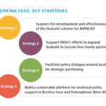 Understanding the Purchasing Context and SP4PHC Strategies in Burkina Faso